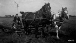 Hantumeruitburen, boer Louw Jensma aan het maaien
