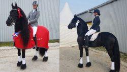 Stal Wijbenga succesvol tijdens de Friese kampioenschappen te Sneek
