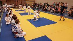 Clubkampioenschappen van Judo Kings in De Westereen