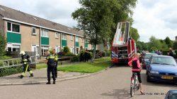 Woningbrand in Damwald: Brandweer ontdekt geen brand