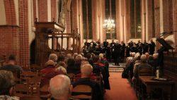 Maartenskerkconcert met Hortus Vocalis