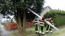 Kijk voor meer foto's op www.rtvnof.nl