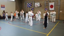 Open dag karateschool Mushin Dojo uit Dokkum