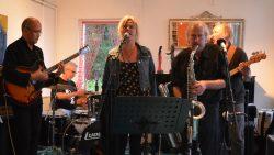 Optreden van The OBD Blues Project tijdens expo in Beeldentuin Graaf van Medwert