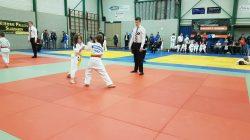 Judo succes voor Kings in Slagharen