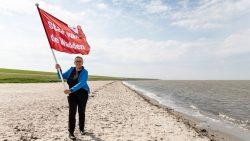 De kersverse directeur van de Waddenvereniging, Lutz Jacobi, hijst de rode vlag voor de Staat van de Wadden