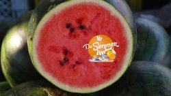 It Simmerrecept - Feestelijke watermeloenpizza's