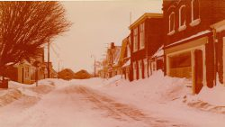 Ternaard februari 1979, Aldbuorren