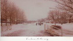 Ternaard februari 1979, Fiskbuorsterwei