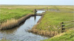 Ook een mooie foto? Mail uw foto naar foto@rtvnof.nl