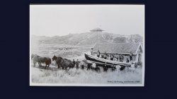 Een ansichtkaart van Texel