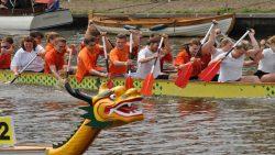 Roeiers gezocht voor Fries Kampioenschap Drakenbootrace Kollum