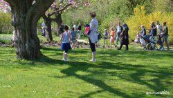 Paashaas in het Wilhelmina Park in Kollum