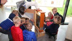 Excursies naar de bijenstal in de Kruidhof
