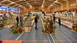 Veel kwaliteit tijdens Frieslandshow