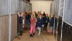 'Op reis' met BEVETRA horsetransport uit Kollumerzwaag