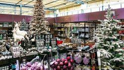 Tuincentrum Tuin omgetoverd tot kerstparadijs