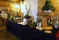 Winterfair bij de Spitkeet in Harkema